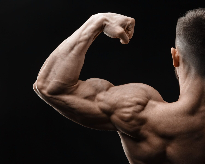 Muskulärer Mann spannt seine Oberarmmuskulatur an | Dein Personal Trainer Berlin