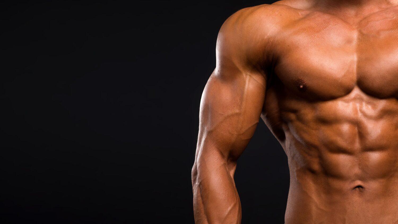 Muskulöser Oberkörper von einem Mann  Dein Personal Trainer Berlin