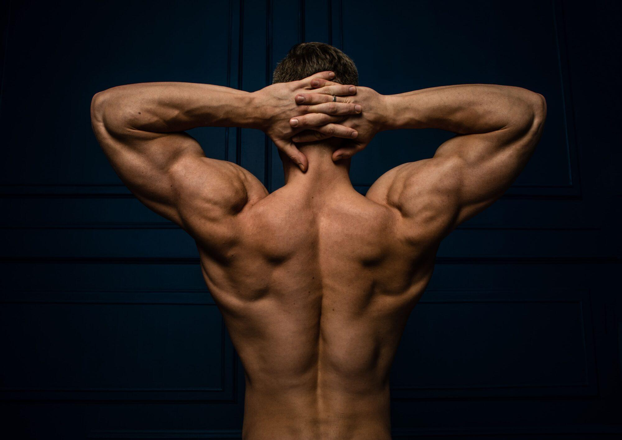 Mann zeigt muskulöse Rückenmuskeln   Dein Personal Trainer Berlin